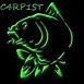 C4RP1ST