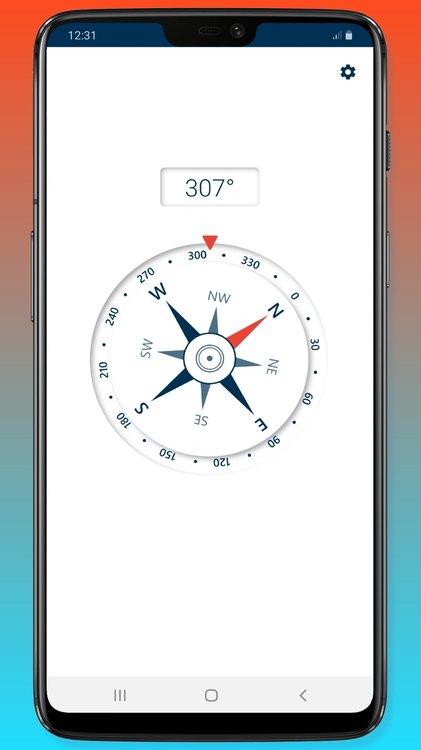 compass_2_framed.thumb.jpg.c45c72061ecbe777a882882d122722dc.jpg