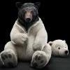Vos premières impressions - last post by Polar_Bear